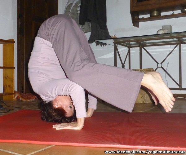 Yoga Individual o Grupal en Almuñécar, Técnica Hatha. Meditación.