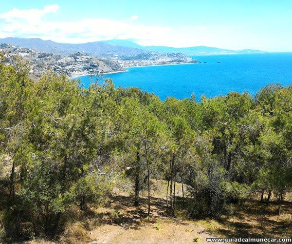 Vistas Panorámicas desde La Ermita en Punta de la Mona.